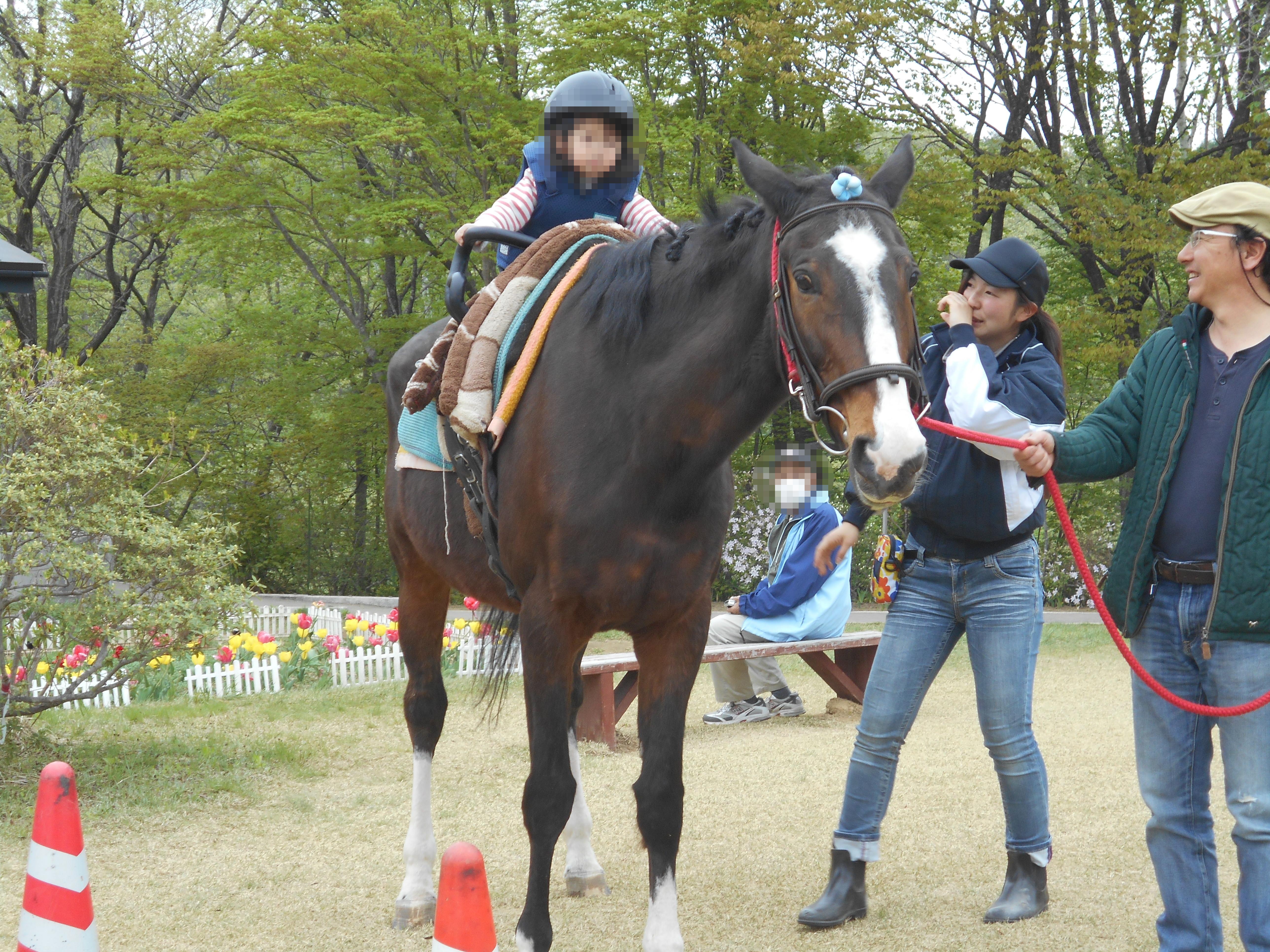 馬とのふれあい体験